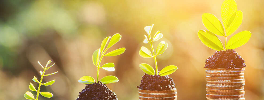 Sustainable, Responsible, Impact (SRI) Investment Expert